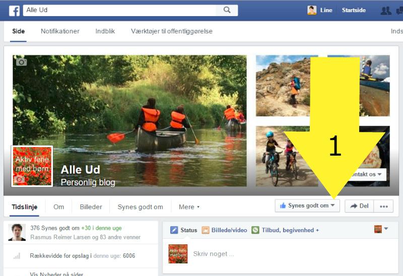 A - 1 MED PIL - Alle Ud Facebook Side - 800 px - MED PIL