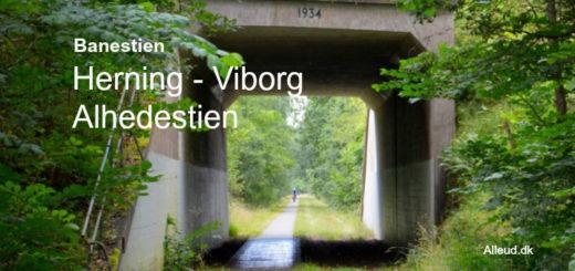 Alhedestien Banesti Herning Viborg konebanen