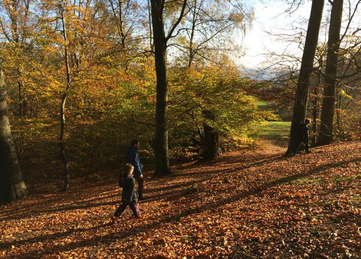 På jagt efter poster i Marselisborg Skoven ved Aarhus - Find vej i Danmark - Alle Ud