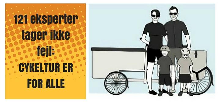 Cykeltur er for alle - infografik fra icebike.org