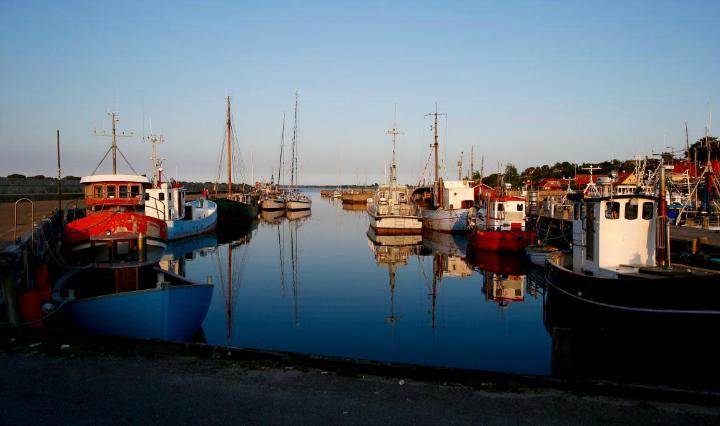 720 The harbor. Sjællands Odde