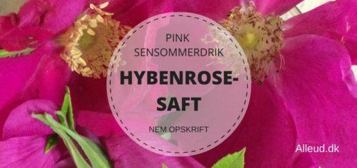 Hybenrosesaft_hybenrose
