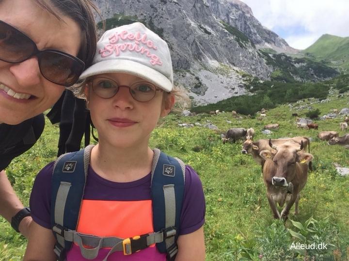Alpeko Vandring Vandretur med børn østrig