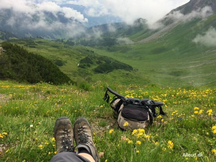 Bjergvandring udsigt østrig rätikon