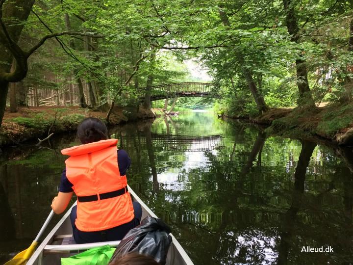 Klüwers Kanal Brassø Avnsø Silkeborg Kanotur