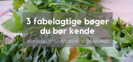 Vild Naturens spisekammer strandurter spis naturen