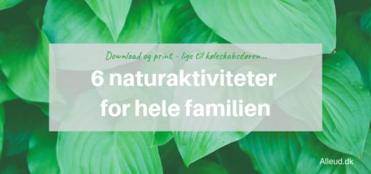 naturaktiviteter born familie natur udeliv sjov alleud