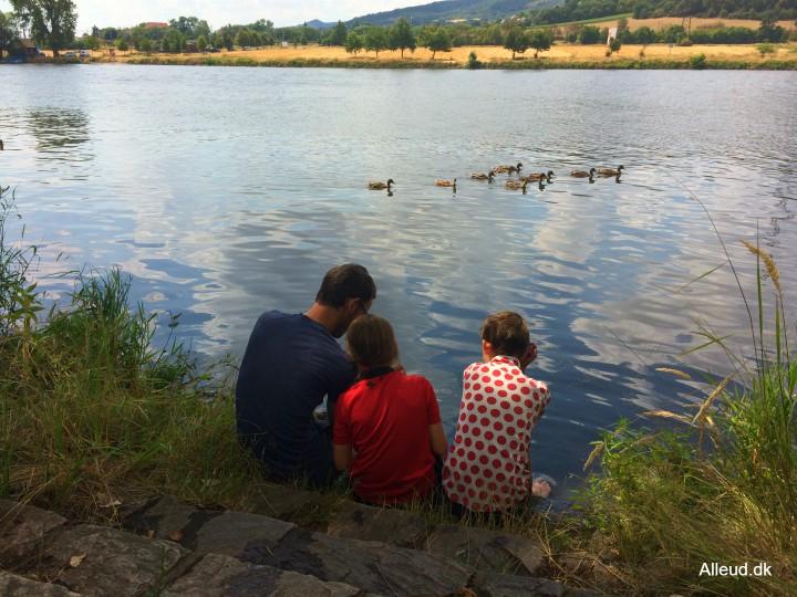 Cykelferie familie børn Elben elbe radweg