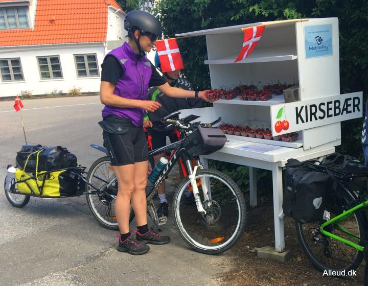 Vejboder østersøruten nationalrute 8 fyn cykeltur cykelferie Danmark