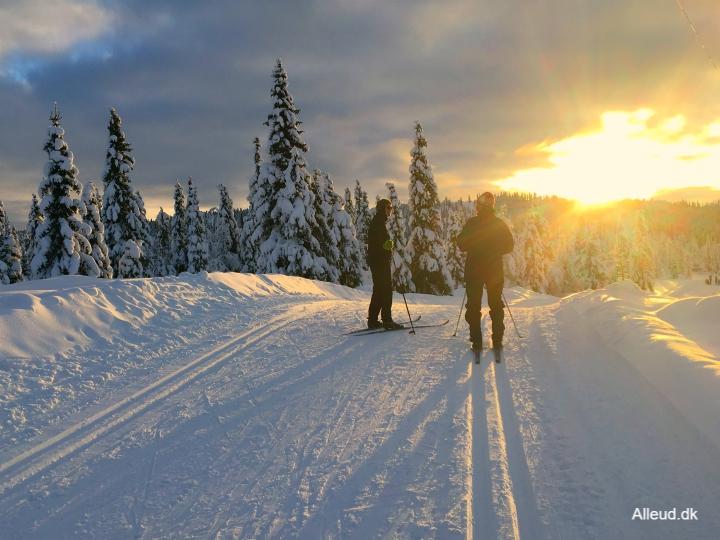 Langrend Norge Austlied skiferie børn familie