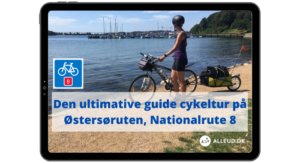 Østersøruten Nationalrute 8