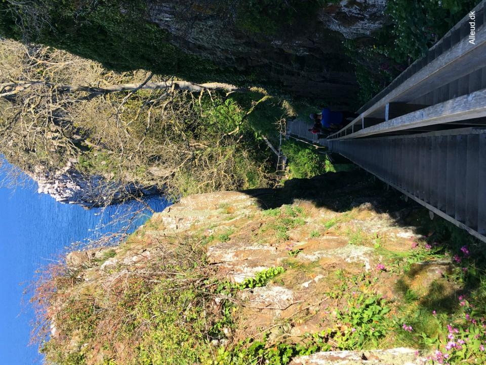 Jons Kapel natur landskab klipper Bornholm