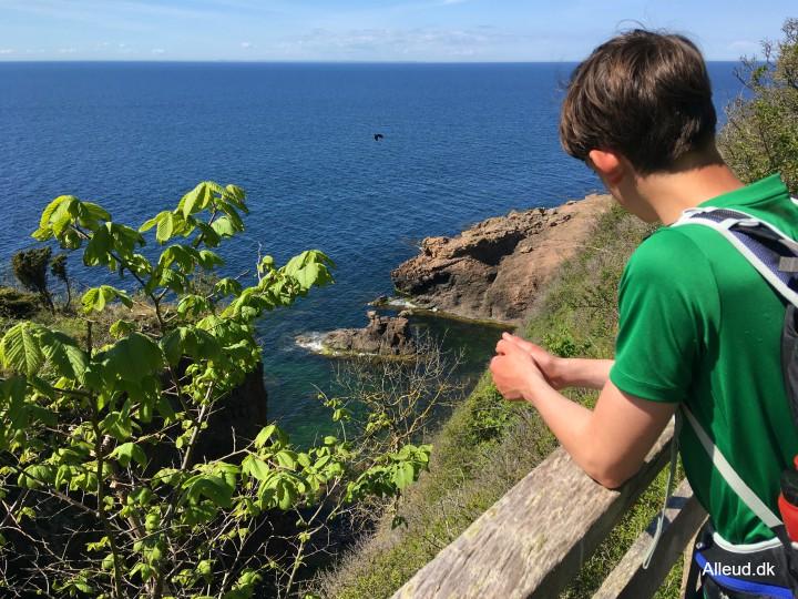 Kamelhovederne klipper kyst klipper Bornholm vandring