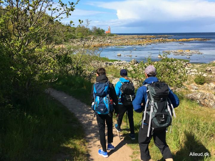 Svaneke vandring vandretur Bornholm rundt