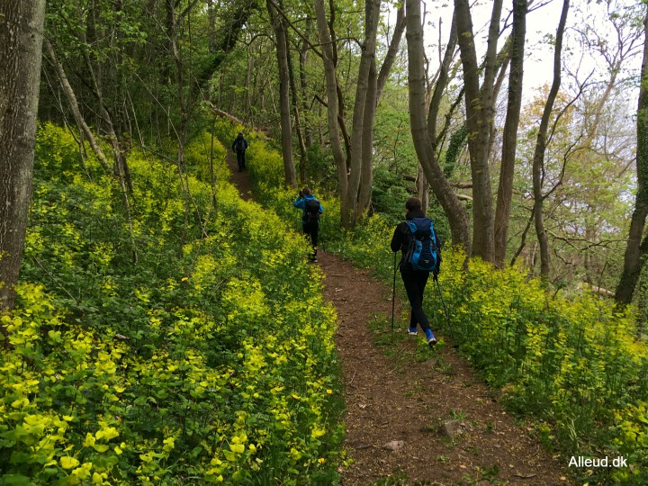 Vandring vandretur familie Bornholm