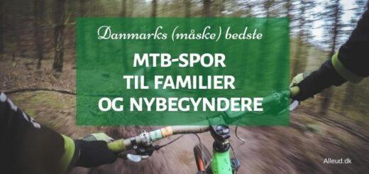 Mountainbike MTB familier børn børnefamilier lette spor