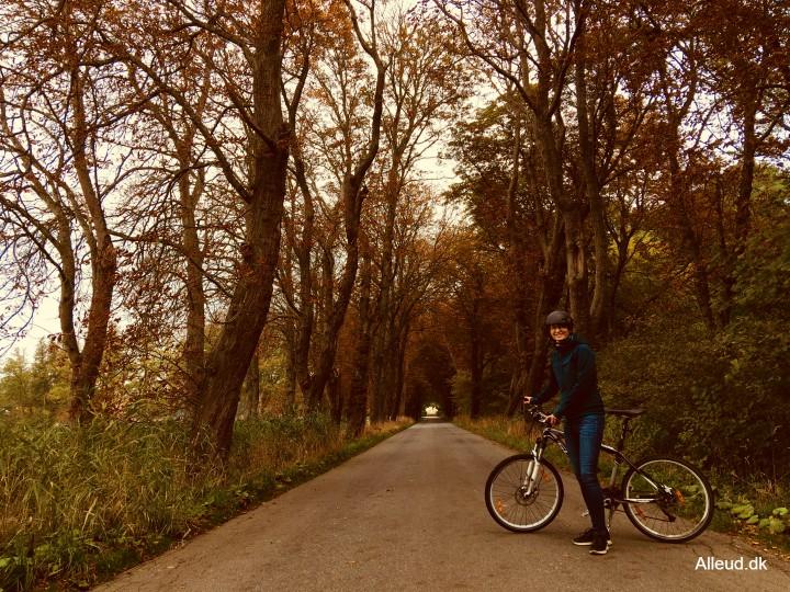 Randers Fjord cykeltur fjorden